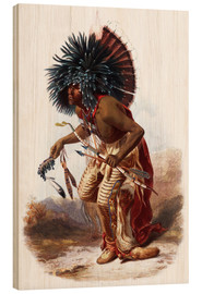 Bois  Indians with blue feathered headdress - Karl Bodmer