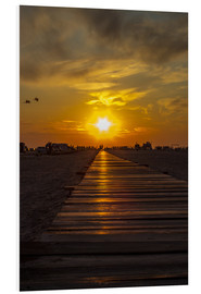 Tableau en PVC  Evening sun in St Peter Ording on the North Sea - Dennis Stracke