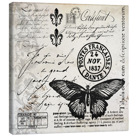 Toile  Vintages Butterfly - Andrea Haase