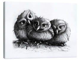 Toile  Three young owls - owlets - Stefan Kahlhammer