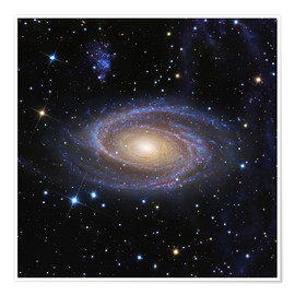 Poster Galaxie M81
