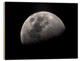 Bois  Waxing gibbous moon - Roth Ritter
