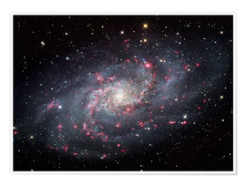 Poster The Triangulum Galaxy