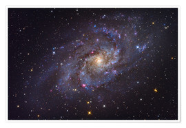 Poster  The Triangulum Galaxy - Roth Ritter