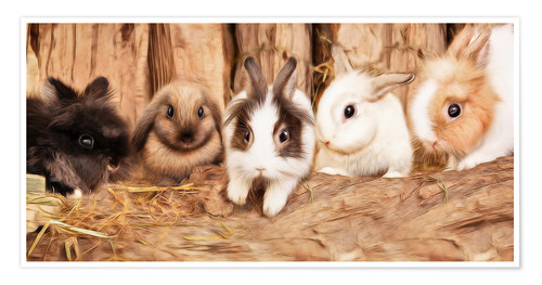 Poster Lapins