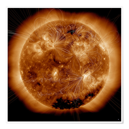 Poster Magnetic field lines on the Sun