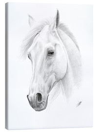 Tableau sur toile  Horse drawing - Christian Klute