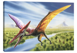 Tableau sur toile  Pterodactyl - Adrian Chesterman