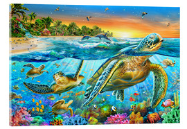 Verre acrylique  Underwater turtles - Adrian Chesterman