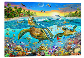 Verre acrylique  Turtle Cove - Adrian Chesterman