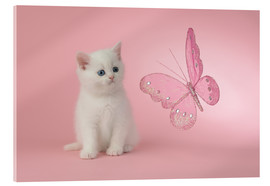 Greg Cuddiford - Kitten with Pink Butterfly