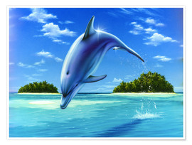 Poster  Mid-day dolphin - Robin Koni