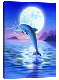 Tableau sur toile  Day of the dolphin - midnight - Robin Koni