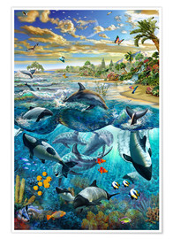 Poster Dolphin beach
