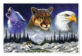 Poster  American wildlife - Chris Hiett