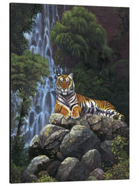 Tableau en aluminium  Tiger waterfall - Chris Hiett