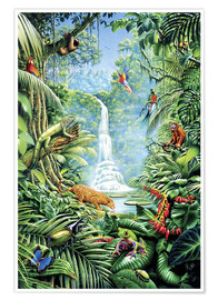 Poster  Forêt tropicale et ses habitants - Gareth Williams