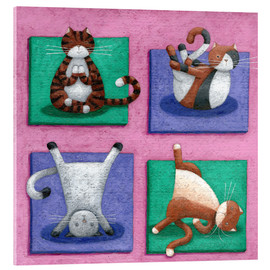 Verre acrylique  Yoga for Cats - Peter Adderley