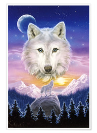 Poster Mountain wolf