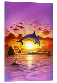 Verre acrylique  Day of the dolphin - sunset - Robin Koni