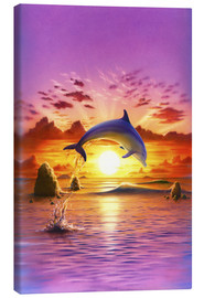 Toile  Day of the dolphin - sunset - Robin Koni