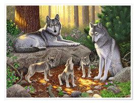 Poster A family of wolves