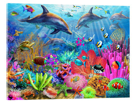 Verre acrylique  Dolphin Coral Reef - Adrian Chesterman