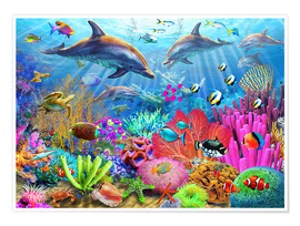 Adrian Chesterman - Dolphin Coral Reef
