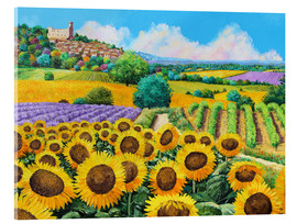 Verre acrylique  Vineyards and sunflowers in Provence - Jean-Marc Janiaczyk