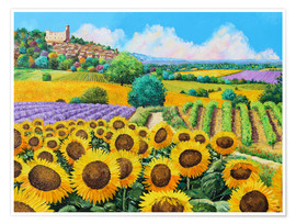 Poster  Vineyards and sunflowers in Provence - Jean-Marc Janiaczyk