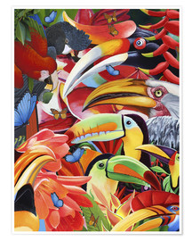 Poster  Jungle colorée - Graeme Stevenson