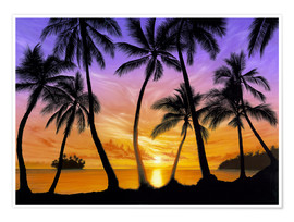 Poster Palm beach sundown
