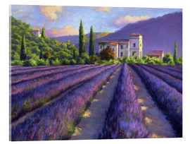 Verre acrylique  Lavender field with Abbey - Jay Hurst