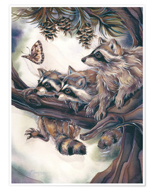 Jody Bergsma - Raccoons and butterfly