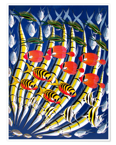 Poster Brightly colored fish school