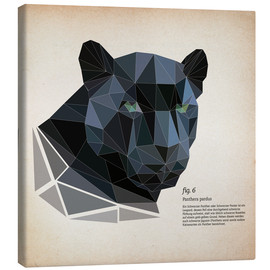 Toile  fig6 polygon Panther square - Labelizer