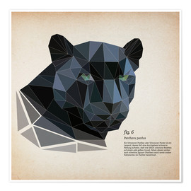 Poster  fig6 polygon Panther square - Labelizer