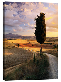 Toile  Sunset over Val d'Orcia, Tuscany - Matteo Colombo