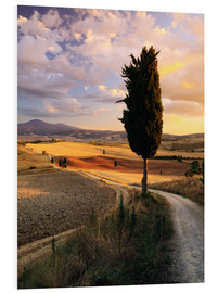 Forex  Sunset over Val d'Orcia, Tuscany - Matteo Colombo