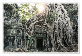 Poster  Famous Tomb Raider temple, Angkor, Cambodia - Matteo Colombo