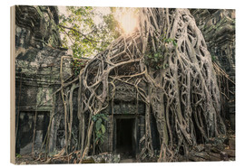 Tableau en bois  Famous Tomb Raider temple, Angkor, Cambodia - Matteo Colombo
