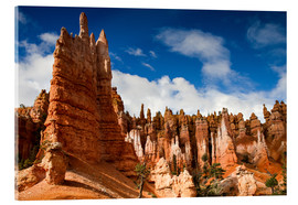 Tableau en verre acrylique  Queen's garden trail at Bryce Canyon - Circumnavigation