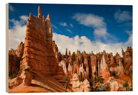 Tableau en bois  Queen's garden trail at Bryce Canyon - Circumnavigation
