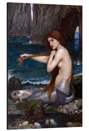 Tableau en aluminium  La sirène - John William Waterhouse