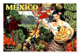 Poster  Mexico - Travel Collection