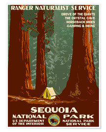 Poster  Parc national de Sequoia (anglais) - Travel Collection
