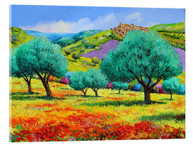 Tableau en verre acrylique  24460 Olive grove facing the sea Kopie - Jean-Marc Janiaczyk