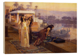 Bois  Cleopatra on the terraces of philae - Frederick Arthur Bridgman