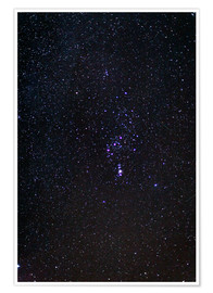 Poster Constellation d'Orion