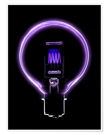 Poster  Incandescent light bulb filament - Mark Sykes